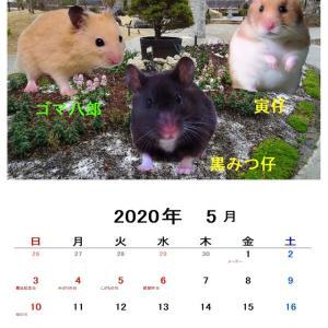 5月のカレンダー、2種類です