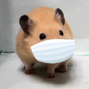僕もマスクしてます(^^)