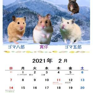 2月のカレンダー2種類つくりました
