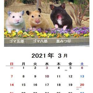 3月のカレンダー2種類です