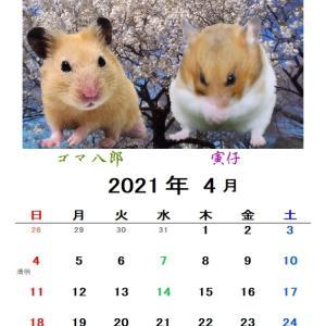 4月のカレンダー、二種類公開〜