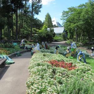 花の文化園ボランティア