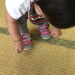 【残5】あんよにピッタリの靴の選び方講座(ファーストサインミニレッスン付)