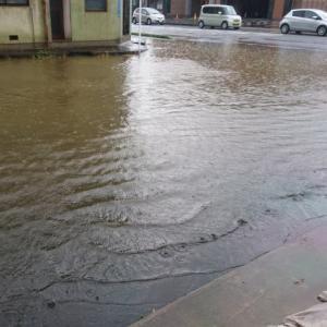 大雨と水害。。。