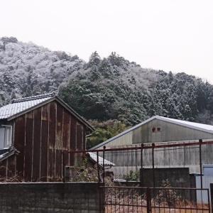 初雪が降りましたぁ