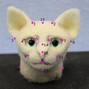 猫の頭・土台2