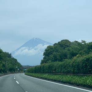 箱根三社参りに行きました。