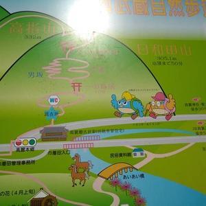 埼玉県の日和田山へ行って来ました。