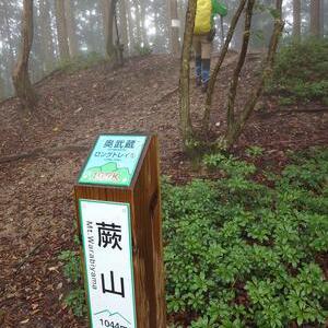 埼玉県の蕨山へ行って来ました。