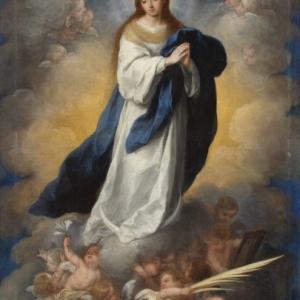 けがれなき聖母の御心に祈る