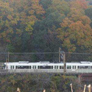 京都にモミジ狩り2 トロッコ保津峡駅