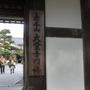 京都にモミジ狩り5 大覚寺 直指庵