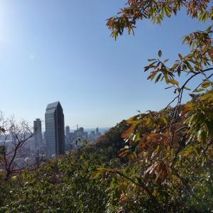 新神戸駅から森林植物園 ハイキング2
