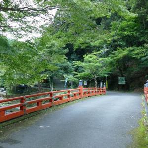 夏の京都に行きました。神護寺1