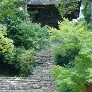 夏の京都に行きました。神護寺2