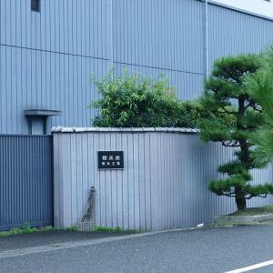 ランチしました。 櫻正宗記念館  櫻宴