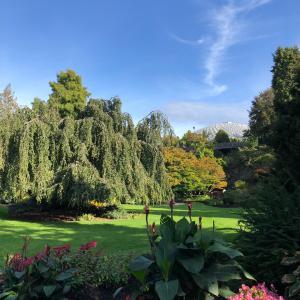 秋を五感で感じる@Queen Elizabeth Park
