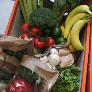お野菜と今後について