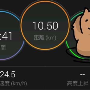 今年のさいたま国際マラソンと。