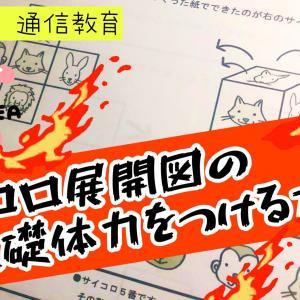 【ペーパー】サイコロ展開の基礎体力をつける方法!小学校受験 図形