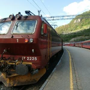 北欧旅行記 フロム鉄道 乗り換え
