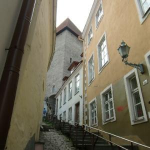 エストニア タリン 散歩 5