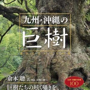 ■「巨樹にカメラを向ける時、ドキドキしませんでしたか?」──榊晃写真集『九州・沖縄の巨樹』に寄せられた声