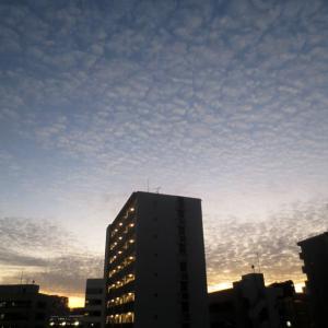 ■雲と空と──週替わりの夕暮れ[11/21・29]