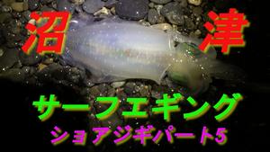 沼津サーフエギング編(ショアジギパート5)