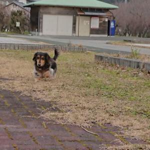 ばぁばも一緒に公園散歩