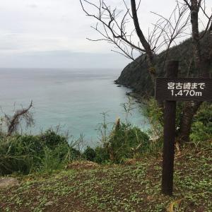 2020/01/26 奄美大島・宮古崎へ