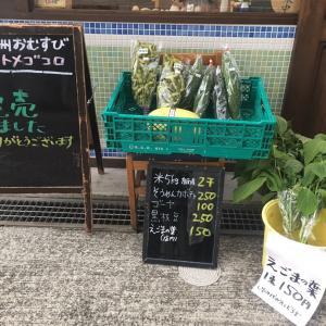8月14日(水)のおむすびは完売しました☆