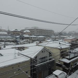 初夏の陽気の次は大雪?!