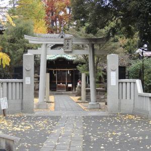 晩秋の浅草・向島散歩‼(4)