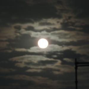 中秋の名月・満月!!