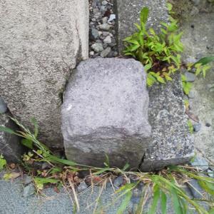 溶岩が境界石
