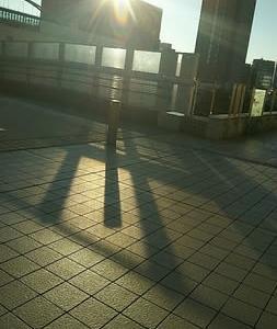 朝日に落ちる影
