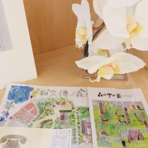 安藤忠雄さん設計「森の中の家 安野光雅館」へ