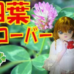 幸運を呼ぶ着ぐるみと四葉のクローバー/Lukky Four Leaf Clover & Kigurumi