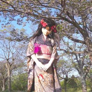 着ぐるみの花見と動画撮影報告/Kigurumi-Gion gone cherry blossom viewing.