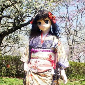 [着ぐるみ]振袖で花見した時の画像/Kigurumi-Gion wearing a kimono gone cherry blossom viewing.
