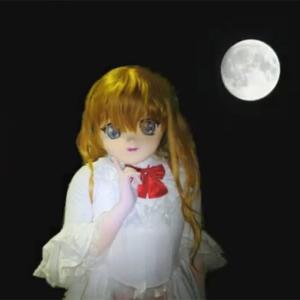 月食、見たかったよ/The Moon.