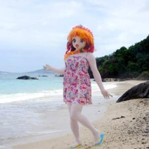 希望ヶ丘ビーチ180度ビュー[着ぐるみ動画]/A panoramic view(video) of the sandy beach Kigurumi doll saw.