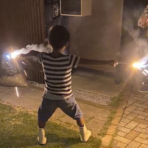 地鎮祭、カブト虫、花火