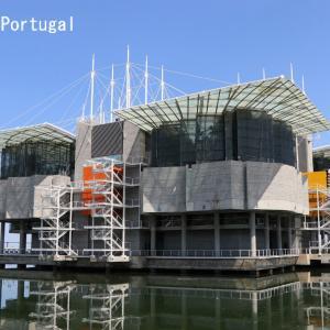 リスボン水族館に行ってきた