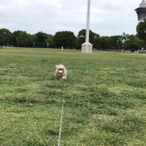 花博記念公園鶴見緑地に行きました~♪(完結編)