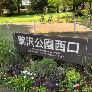 まず公園へ【第7082話】