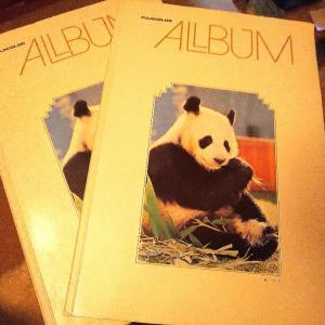 たまにはアルバムを眺めてみる。