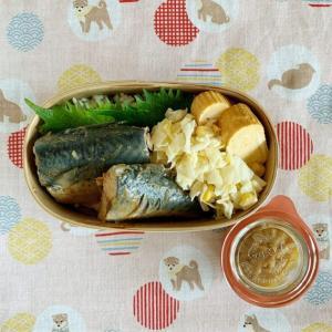「最高の体調」やってみてることと、鯖の煮付け弁当