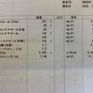 更年期入り口にいる45歳女のコレステロール値測定結果!